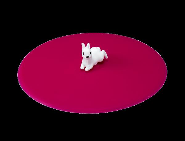 Mein Deckel Haustier Hase