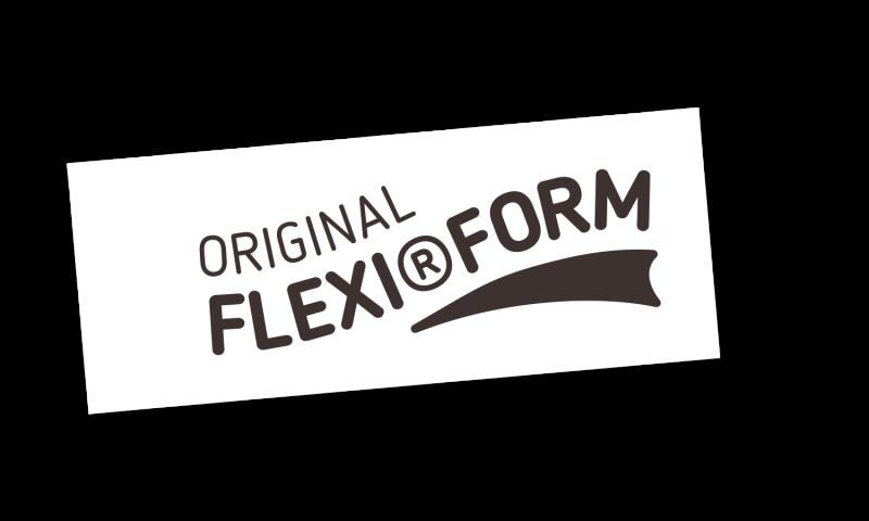 media/image/Logo_Flexi_Form_gross.png