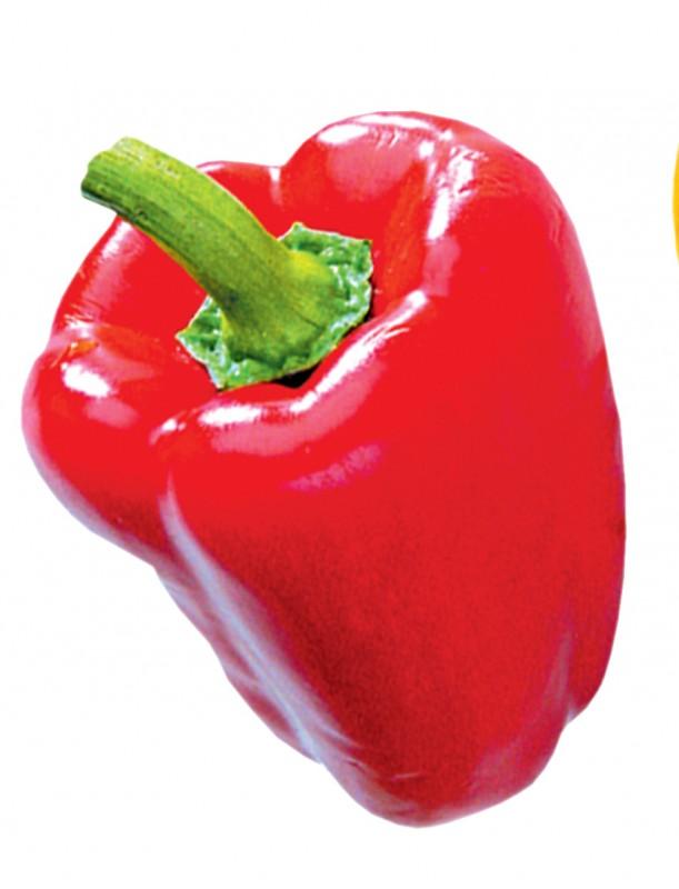 Granatapfel Paprika Rosmarin Saft Leckere Rezepte bei LURCH.