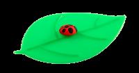 Vorschau: Mein Deckel Blatt Marienkäfer
