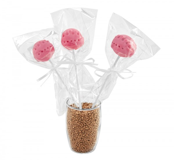 Geschenkverpackung Cake Pops 3teilig 8 Stück