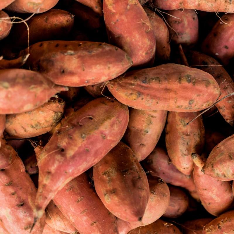 Schneiden von Süßkartoffel mit dem Spiralschneider